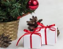 Árvore de Natal bonita no fundo branco Fotos de Stock