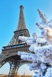 Árvore de Natal coberta com a neve perto da torre Eiffel em Paris Foto de Stock