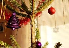 Árvore de Natal com as decorações roxas e vermelhas Fotografia de Stock Royalty Free
