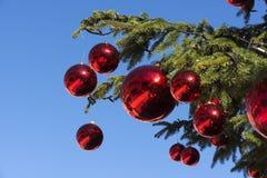 Árvore de Natal com esferas vermelhas Fotografia de Stock