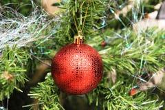 Árvore de Natal com esferas vermelhas Fotografia de Stock Royalty Free