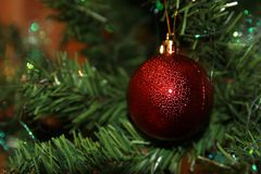 Árvore de Natal com esferas vermelhas Imagens de Stock Royalty Free