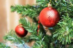 Árvore de Natal com esferas vermelhas Foto de Stock Royalty Free
