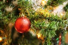 Árvore de Natal com esferas vermelhas Imagens de Stock