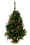 Árvore de Natal com festão Fotos de Stock
