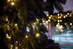 Árvore de Natal com luzes Fotografia de Stock Royalty Free