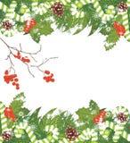 A árvore de Natal com ouropel, bastões de doces e Rowan ramifica Fundo do Natal Imagem de Stock Royalty Free