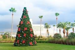 Árvore de Natal com quinquilharias e palmeiras em Florida tropical Imagem de Stock Royalty Free