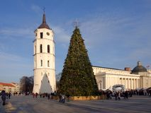 Árvore de Natal da cidade, Vilnius, Lituânia Imagem de Stock