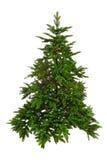 Árvore de Natal desencapada Imagens de Stock Royalty Free
