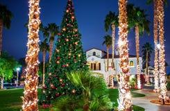 Árvore de Natal do centro imagem de stock royalty free