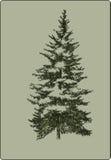 Árvore de Natal do vintage, mão-desenho Ilustração do vetor Fotografia de Stock Royalty Free