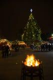 Árvore de Natal e fogueira de aquecimento Fotografia de Stock Royalty Free