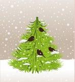 Árvore de Natal e pássaros, vetor da neve Fotografia de Stock