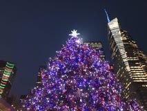 Árvore de Natal em Bryant Park em Manhattan imagens de stock