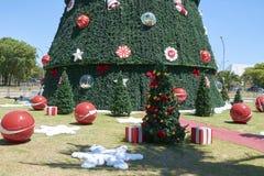 Árvore de Natal em Ibirapuera na cidade de Sao Paulo Imagens de Stock Royalty Free