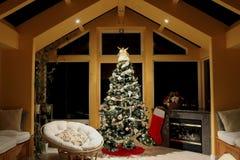 Árvore de Natal em um quarto de vidro Foto de Stock Royalty Free