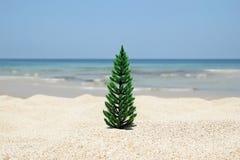 Árvore de Natal em um Sandy Beach no fundo do mar azul e no céu em um dia ensolarado imagens de stock royalty free
