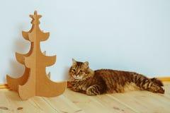 Árvore de Natal feita do cartão Ano novo Imagens de Stock
