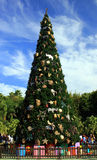 Árvore de Natal grande foto de stock