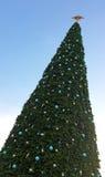 Árvore de Natal grande Fotos de Stock Royalty Free