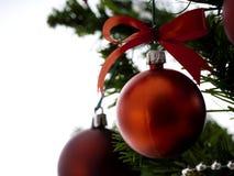 A árvore de Natal grande decorada com estrelas e as bolas vermelhas bonitas comemoram o festival fotografia de stock royalty free