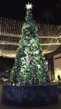 Árvore de Natal iluminada exterior Fotografia de Stock