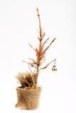 Árvore de Natal inoperante foto de stock royalty free