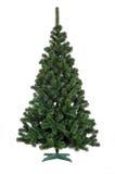Árvore de Natal isolada Fotografia de Stock