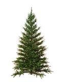 Árvore de Natal isolada no fundo branco Fotografia de Stock Royalty Free