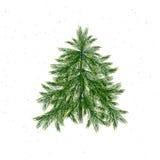 Árvore de Natal isolada no fundo branco Imagens de Stock