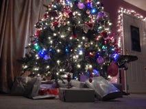 Árvore de Natal louca Fotos de Stock Royalty Free