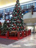 Árvore de Natal na alameda Foto de Stock Royalty Free