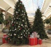 Árvore de Natal na alameda Foto de Stock