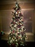 Árvore de Natal na janela imagens de stock royalty free