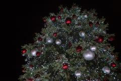 Árvore de Natal na noite imagem de stock