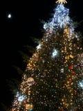 Árvore de Natal na noite fotografia de stock