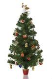 Árvore de Natal no fundo branco. Foto de Stock Royalty Free