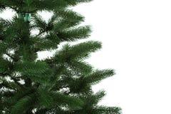 Árvore de Natal no fundo branco Imagem de Stock