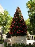 Árvore de Natal no pátio da igreja do casamento imagem de stock royalty free