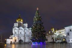 Árvore de Natal no quadrado da catedral na Moscou Kremli fotos de stock