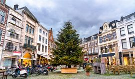 Árvore de Natal no quadrado de Plaats em Haia, os Países Baixos fotografia de stock