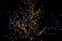 Árvore de Natal de O: As luzes em John Dam Plaza iluminam feriados fotografia de stock royalty free