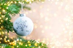 Árvore de Natal o fundo do bokeh Fundos do cartão do Natal fotografia de stock royalty free