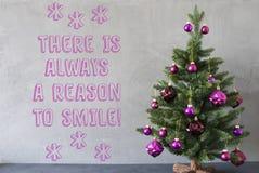 A árvore de Natal, parede do cimento, cita sempre a razão sorrir Fotografia de Stock Royalty Free
