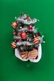 Árvore de Natal pequena entregue a você Imagem de Stock Royalty Free