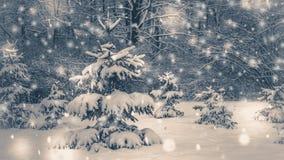 Árvore de Natal pequena muito agradável nas madeiras com neve ilustração royalty free