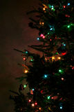 Árvore de Natal Sideview Fotos de Stock Royalty Free
