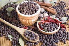 Árvore de pimenta da Jamaica e a outra especiaria Fotografia de Stock