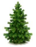 Árvore de pinho ilustração royalty free